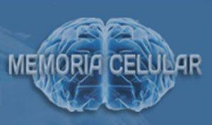 memoria celular