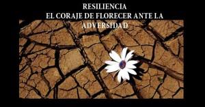 resiliencia03