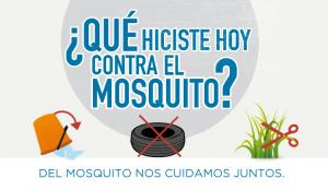 20160211-dengue